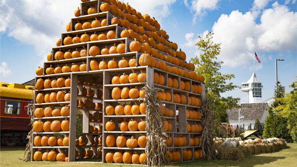 'Once Upon a Pumpkin' – Pumpkin Village 2021